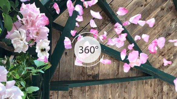 Roseraie Sainte-Anne en 360°
