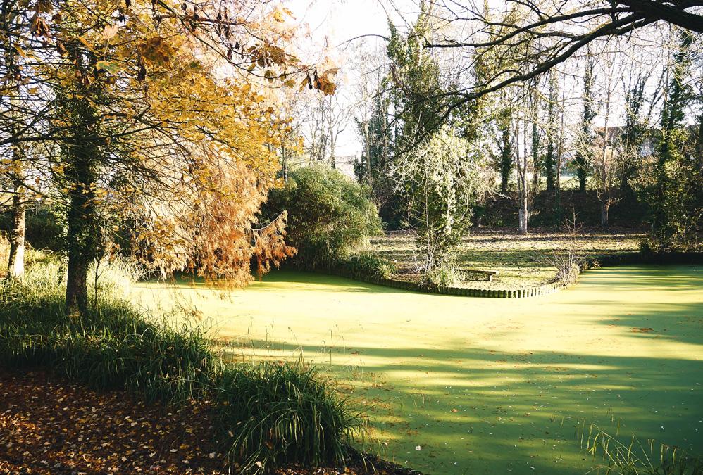 Jardin du Pont Toqué